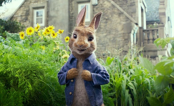 peter-rabbit-gidahatti